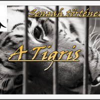 A Tigris (Sengah története)