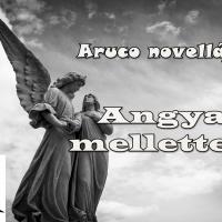 Angyal mellettem (Aruco novellája)