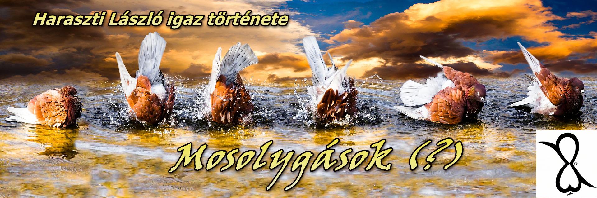 Mosolygások(?) – Haraszti László története