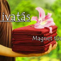 Hivatás (Magnet története)