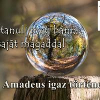 Így tanulj meg bánni saját magaddal (Amadeus igaz története)