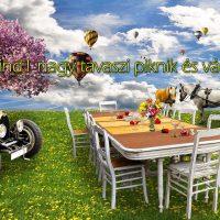 Nememind1 nagy tavaszi piknik és városnézés