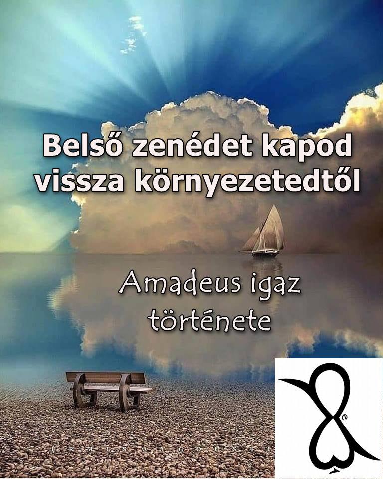 /Musica è/ Belső zenédet kapod vissza környezetedtől (Amadeus igaz története)