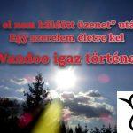 """""""Az el nem küldött üzenet"""" után… Egy szerelem életre kel – Wandoo igaz története, 3. rész"""