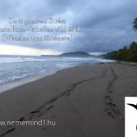 Do it yourself 3. rész Costa Rica – Minden zöld és él (Wandoo igaz története)