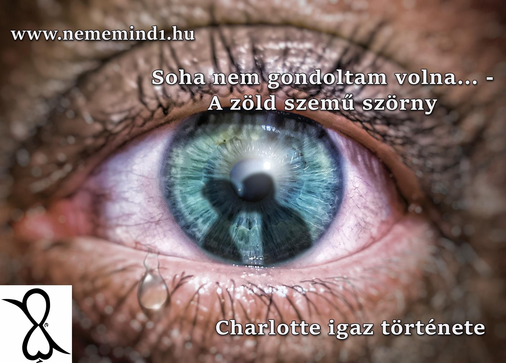 Soha nem gondoltam volna… – A zöld szemű szörny (Charlotte igaz története)