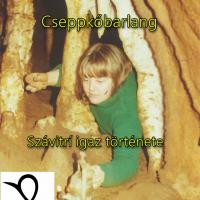 Cseppkőbarlang (Szávitrí igaz története)
