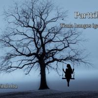 Tiana: Parttól-partig (Hangos igaz történet)