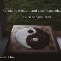 Evica: Karma és minden, ami ezzel kapcsolatos (Hangos igaz történet)