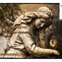 Egy Angyal tollával (Félhold igaz története)