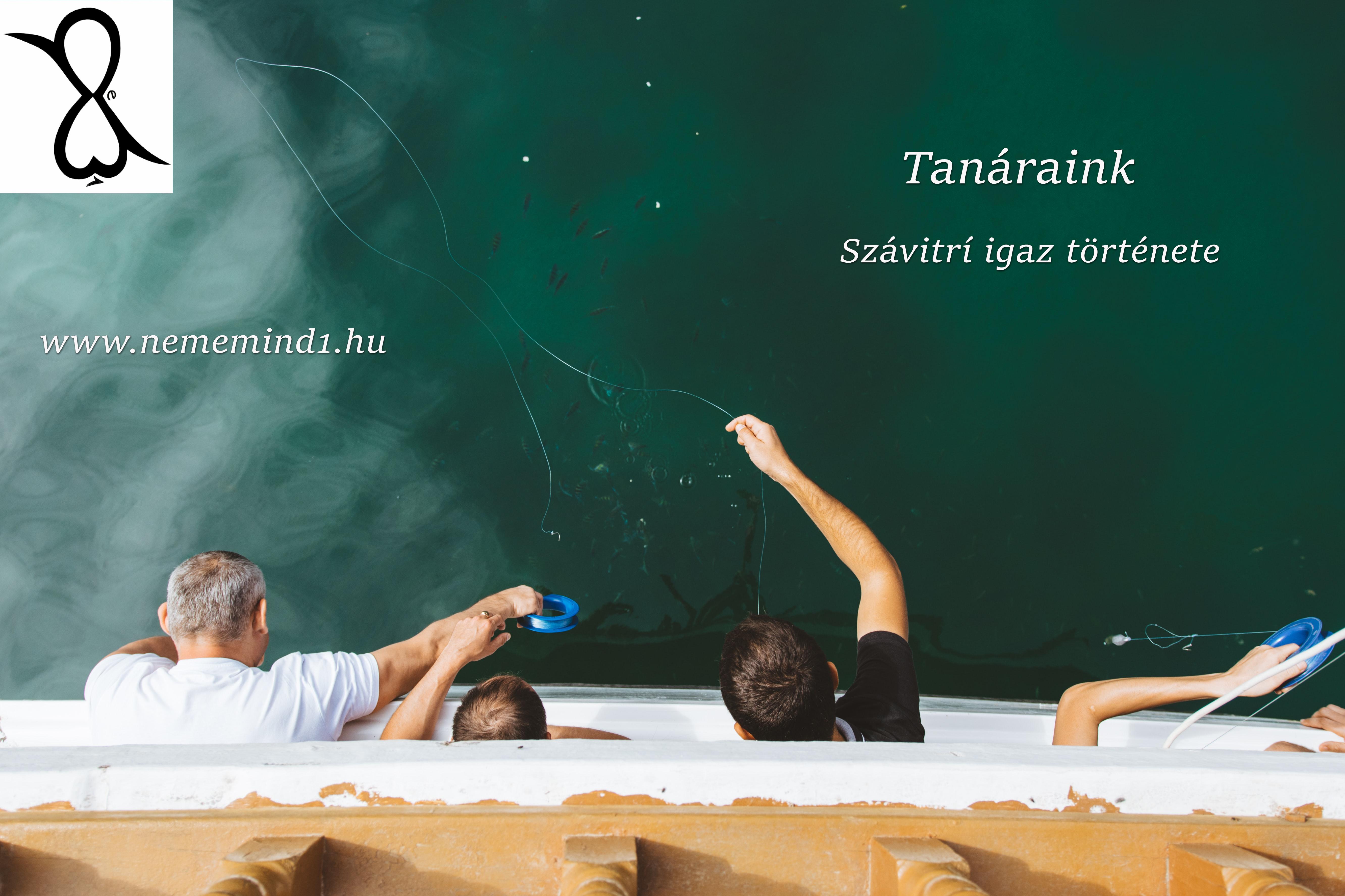 Tanáraink (Szávitrí igaz története)