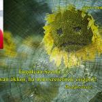 Hangos Fogolyán Szellő (Harangi Emese) írások 41, És mi van akkor, ha nem szeretnek viszont? (Esszé)