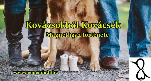 Kovácsokból Kovácsék (Magnet igaz története)