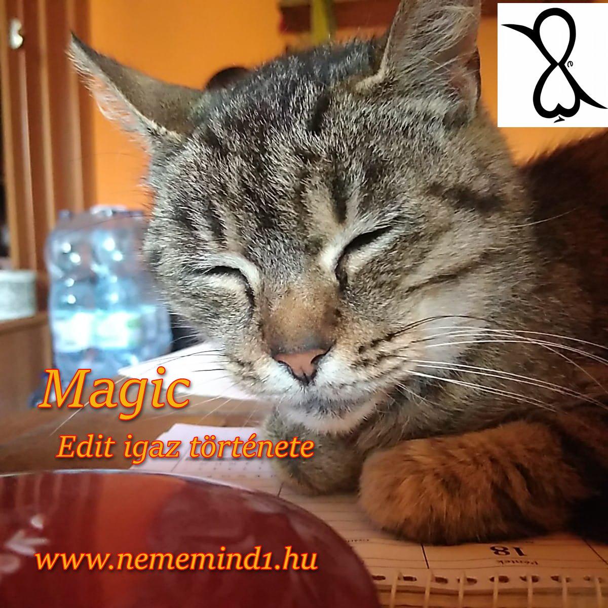 Magic (Edit igaz története)