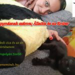 Egymásnak szánva; Állatka és az Ember – Avagy Jedi cica és az én történetem (Írta: Fogolyán Szellő)
