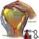 Hangos Fogolyán Szellő (Harangi Emese) írások 53, Az Aranyszív barikádja (Esszé)
