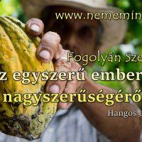 Hangos Fogolyán Szellő (Harangi Emese) írások 54, Az egyszerű emberek nagyszerűségéről